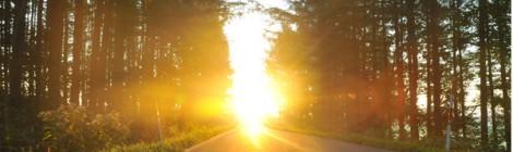 [道のある風景3] 美瑛 丘の道