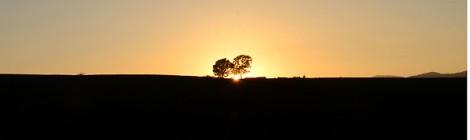 夕陽・夕焼け 追っかけ