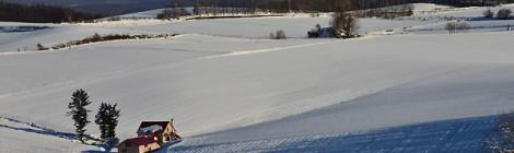 美瑛 冬の訪れ