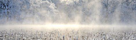 厳冬の富良野・鳥沼公園