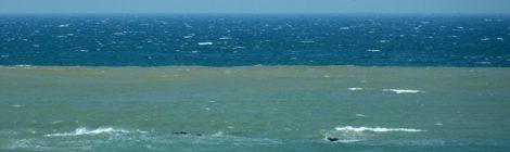 三色の日本海