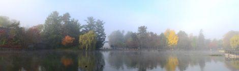 朝霧の常磐公園