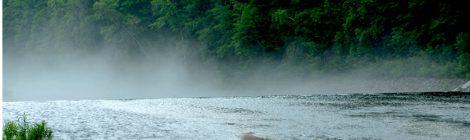 朝靄の美瑛川